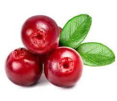 Cranberry,-pianta-amica-della-vescica-contro-la-cistite